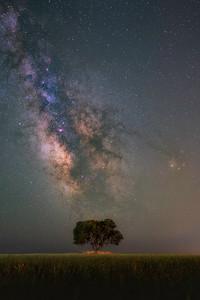 Made from 50 light frames by Starry Landscape Stacker 1.8.0.  Algorithm: Min Horizon Noise