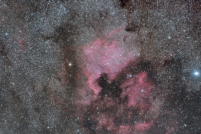 North America (NGC 7000) and Pelican (IC 5070) Nebulae in Cygnus