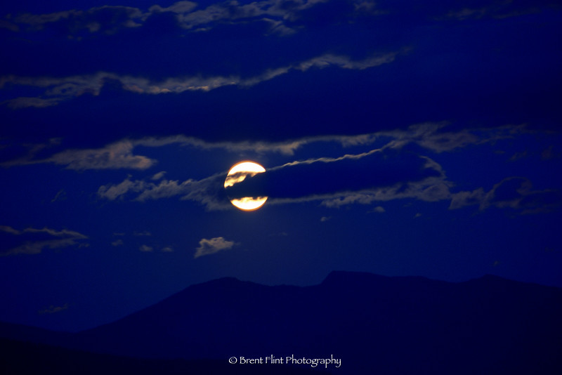 S.4998 - moon over Cabinet Mountains, Kootenai National Wildlife Refuge, ID.
