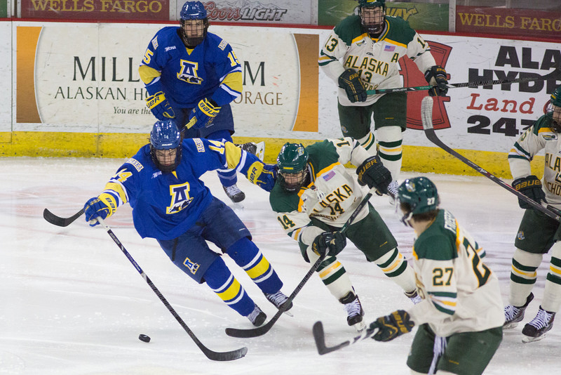 """UAF Men's Hockey Team spars with UAA Seawolves on the first match of the Alaska Airlines Governor's Cup at the Sullivan Arena in Anchorage.  <div class=""""ss-paypal-button"""">Filename: ATH-13-4017-272.jpg</div><div class=""""ss-paypal-button-end"""" style=""""""""></div>"""