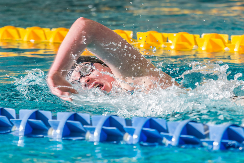 "Freshman Kathryn Pound strokes her way toward the finish line to win the 500-yard freestyle event during the Nanooks' meet against Loyola Marymount in the Patty Pool.  <div class=""ss-paypal-button"">Filename: ATH-13-3991-203.jpg</div><div class=""ss-paypal-button-end"" style=""""></div>"