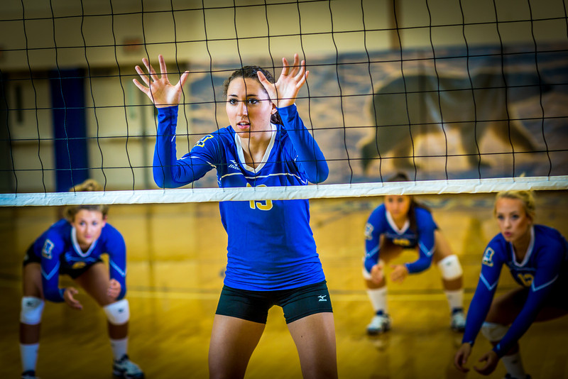 """Members of the Nanook volleyball team practice in the Patty Gym.  <div class=""""ss-paypal-button"""">Filename: ATH-13-3908-050.jpg</div><div class=""""ss-paypal-button-end"""" style=""""""""></div>"""