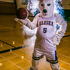 "The Nanook mascot tries to keep his cool while hanging out in the Patty Gym.  <div class=""ss-paypal-button"">Filename: ATH-13-3850-20.jpg</div><div class=""ss-paypal-button-end"" style=""""></div>"