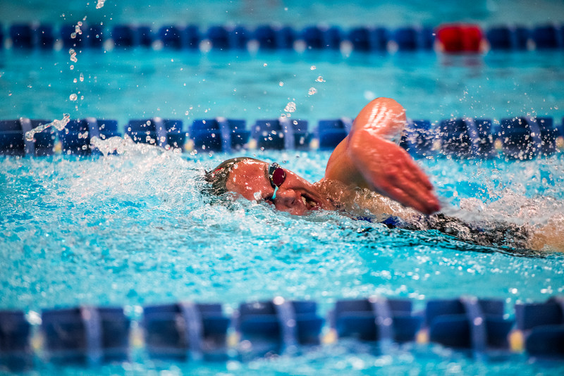 """Sophomore Sierra Kinworthy competes in the 1,000-yard freestyle during the Nanooks' meet against Concordia-Irvine on Friday, Nov. 11, 2016 in the Patty Pool.  <div class=""""ss-paypal-button"""">Filename: ATH-16-5059-5.jpg</div><div class=""""ss-paypal-button-end""""></div>"""