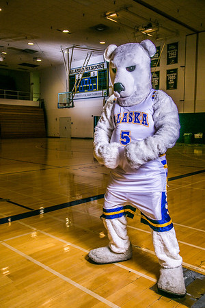 The Nanook mascot poses for a photoshoot while hanging out in the Patty Gym.  Filename: ATH-13-3850-2.jpg