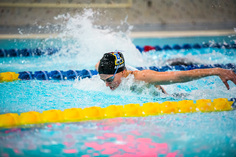 """Senior Victoria Adams competes in the second heat of the 100-yard butterfly during the Nanooks' meet against Concordia-Irvine on Friday, Nov. 11, 2016 in the Patty Pool.  <div class=""""ss-paypal-button"""">Filename: ATH-16-5059-12.jpg</div><div class=""""ss-paypal-button-end""""></div>"""