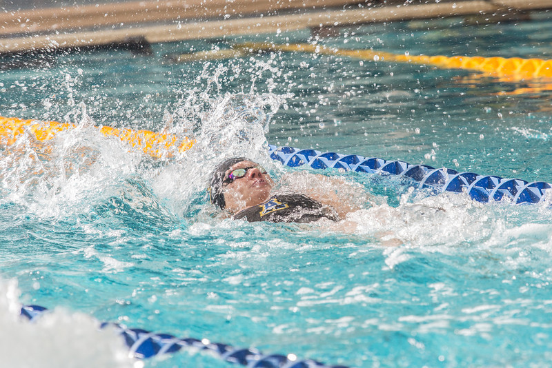 "Senior Bente Heller pushes toward the end of her leg in the 400-yard medley relay during the Nanooks' meet against Loyola Marymount in the Patty Pool.  <div class=""ss-paypal-button"">Filename: ATH-13-3991-23.jpg</div><div class=""ss-paypal-button-end"" style=""""></div>"