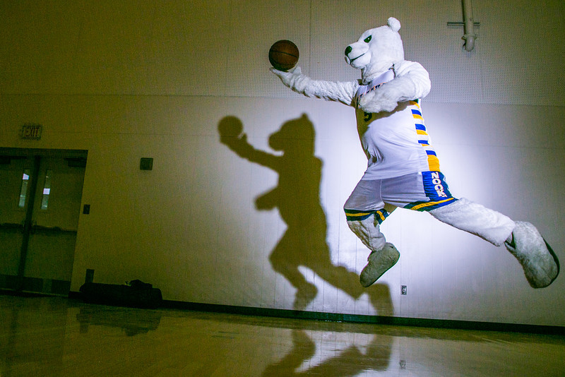 """The Nanook mascot practices his basketball skillset in the Patty Gym.  <div class=""""ss-paypal-button"""">Filename: ATH-13-3850-70.jpg</div><div class=""""ss-paypal-button-end"""" style=""""""""></div>"""