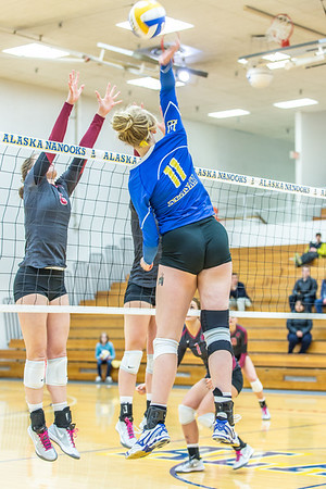 Sophomore Sam Harthun skies for another kill against Central Washington.  Filename: ATH-13-3980-12.jpg