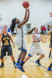 Point guard Benissa Bulaya puts up a jump shot during the first half of the championship game of the North Star Invitational Tournament against Wayne State in the Patty Gym.  Filename: ATH-13-4010-20.jpg