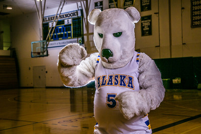 The Nanook mascot poses for a photoshoot while hanging out in the Patty Gym.  Filename: ATH-13-3850-11.jpg