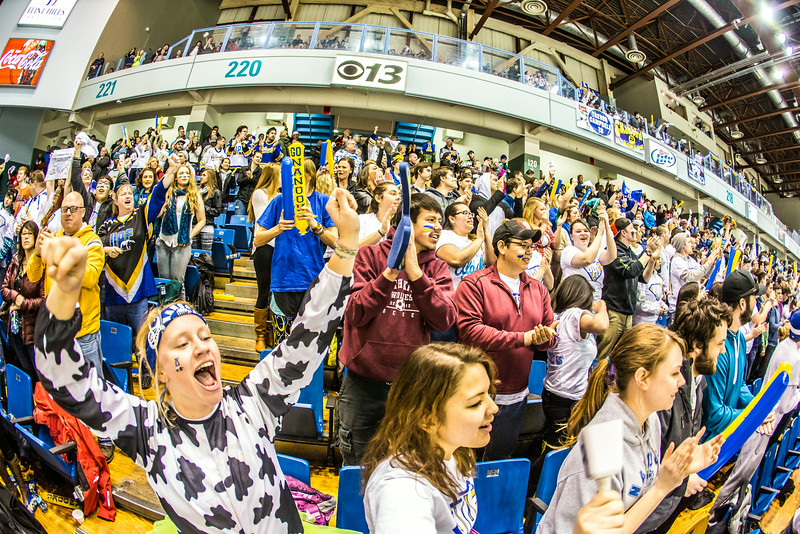 """The Nanook faithful go crazy in the stands after a goal during the Nanooks game against the UAA Seawolves for the 2014 Governor's Cup March 8 in the Carlson Center.  <div class=""""ss-paypal-button"""">Filename: ATH-14-4109-291.jpg</div><div class=""""ss-paypal-button-end""""></div>"""