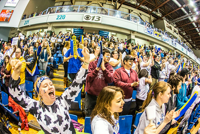 The Nanook faithful go crazy in the stands after a goal during the Nanooks game against the UAA Seawolves for the 2014 Governor's Cup March 8 in the Carlson Center.  Filename: ATH-14-4109-291.jpg