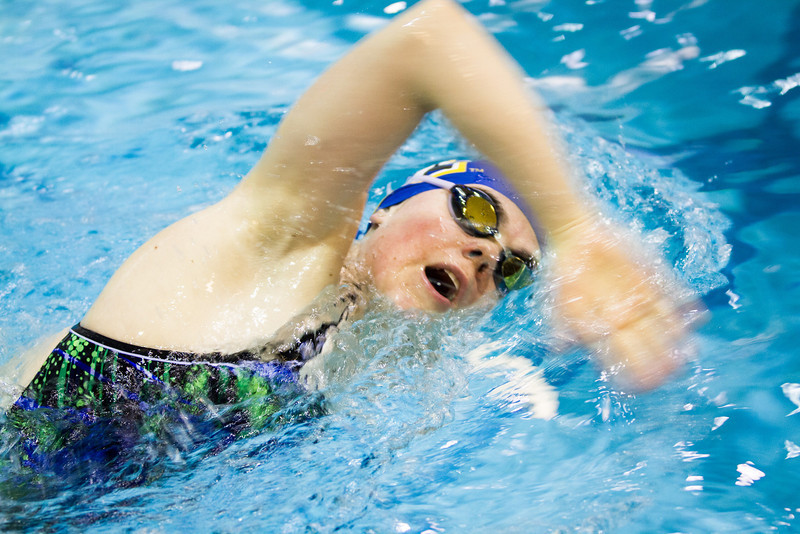 "Nanook swimmers take part in a friendly but fierce competition during the 2012 Blue and Gold Swim Meet Saturday, Oct. 13 at the Patty Center.  <div class=""ss-paypal-button"">Filename: ATH-12-3588-76.jpg</div><div class=""ss-paypal-button-end"" style=""""></div>"
