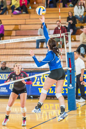 """Junior Morgan McGrath tips the ball at the net against Central Washington.  <div class=""""ss-paypal-button"""">Filename: ATH-13-3980-130.jpg</div><div class=""""ss-paypal-button-end"""" style=""""""""></div>"""