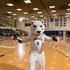 "The Nanook mascot is a regular at UAF basketball games on the Alaska Airlines Court in the Patty Gym.  <div class=""ss-paypal-button"">Filename: ATH-16-4810-47.jpg</div><div class=""ss-paypal-button-end""></div>"