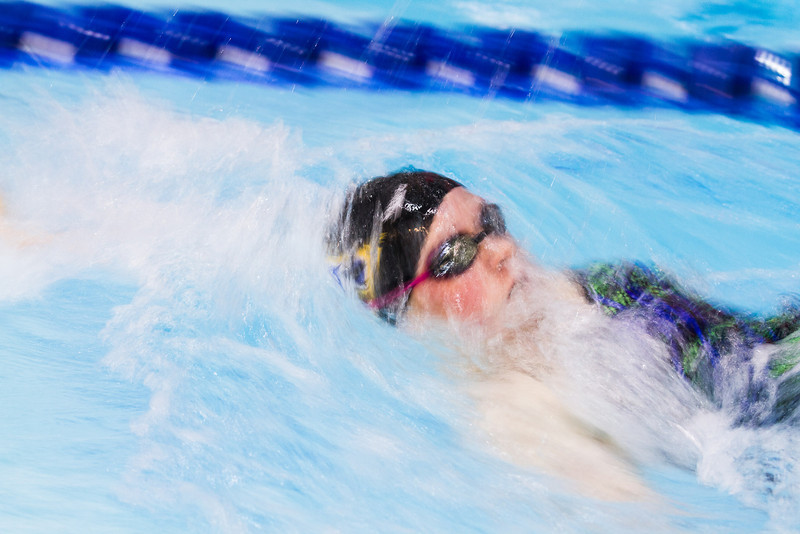 """Nanook swimmers take part in a friendly but fierce competition during the 2012 Blue and Gold Swim Meet Saturday, Oct. 13 at the Patty Center.  <div class=""""ss-paypal-button"""">Filename: ATH-12-3588-71.jpg</div><div class=""""ss-paypal-button-end"""" style=""""""""></div>"""
