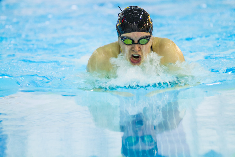 """Nanook swimmers take part in a friendly but fierce competition during the 2012 Blue and Gold Swim Meet Saturday, Oct. 13 at the Patty Center.  <div class=""""ss-paypal-button"""">Filename: ATH-12-3588-77.jpg</div><div class=""""ss-paypal-button-end"""" style=""""""""></div>"""