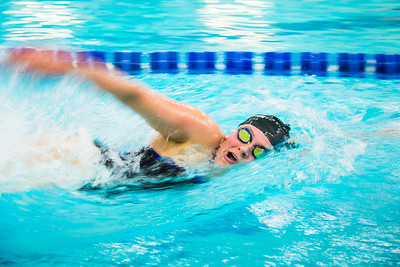 Nanook swimmers take part in a swim meet at the Patty Center pool.  Filename: ATH-14-4050-16.jpg