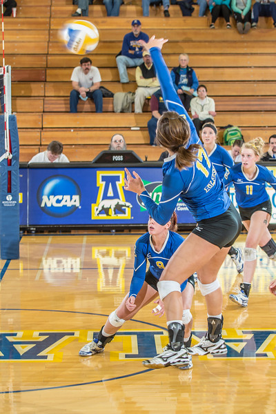 """Junior Tessa Butterfield goes for a kill against Central Washington.  <div class=""""ss-paypal-button"""">Filename: ATH-13-3980-117.jpg</div><div class=""""ss-paypal-button-end"""" style=""""""""></div>"""