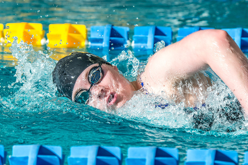"Freshman Kathryn Pound strokes her way toward the finish line to win the 1000-yard freestyle event during the Nanooks' meet against Loyola Marymount in the Patty Pool.  <div class=""ss-paypal-button"">Filename: ATH-13-3991-67.jpg</div><div class=""ss-paypal-button-end"" style=""""></div>"