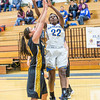 "Junior forward Delisa Chapman shoots a close jumper during the first half of the championship game of the North Star Invitational Tournament against Wayne State in the Patty Gym.  <div class=""ss-paypal-button"">Filename: ATH-13-4010-17.jpg</div><div class=""ss-paypal-button-end"" style=""""></div>"