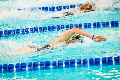 Nanook swimmers take part in a swim meet at the Patty Center pool.  Filename: ATH-14-4050-80.jpg