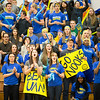 "The UAF student section cheers for the Alaska Nanooks Womens Volleyball team during a match against UAF at the Patty Center.  <div class=""ss-paypal-button"">Filename: ATH-13-3966-7.jpg</div><div class=""ss-paypal-button-end""></div>"