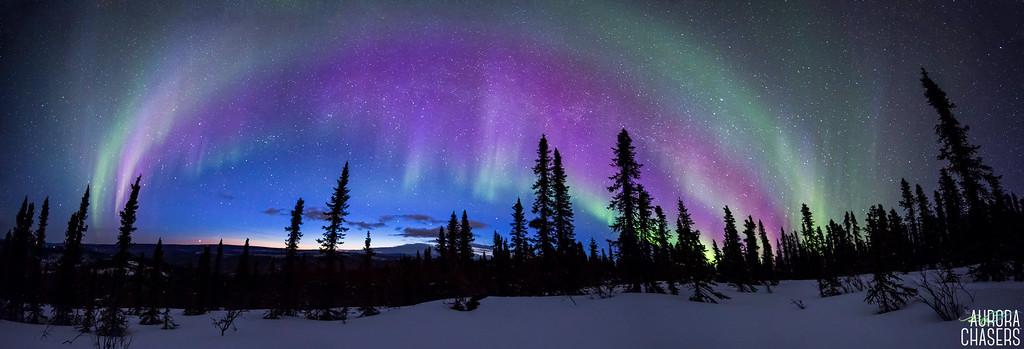 Sunlit Aurora