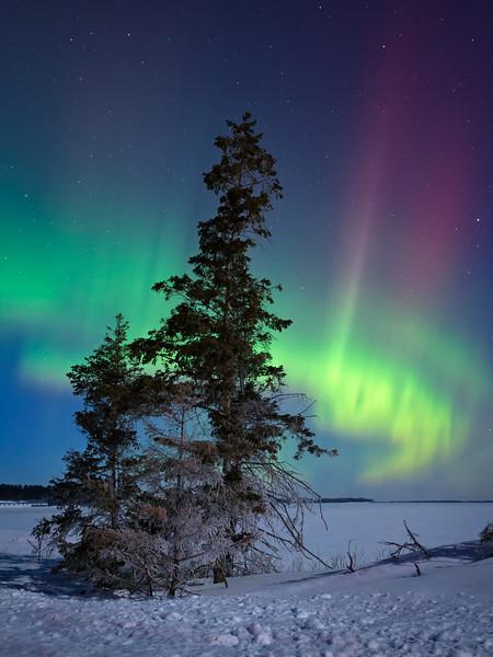 Magic of the North