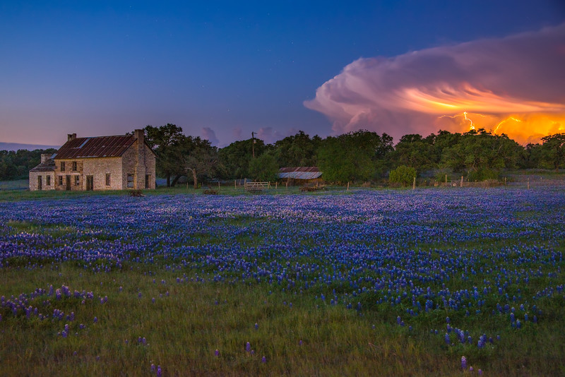 Bluebonnets and Lightning 2