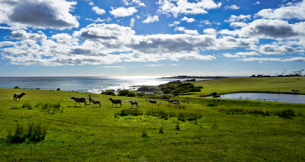 Australia & Tasmania 2016