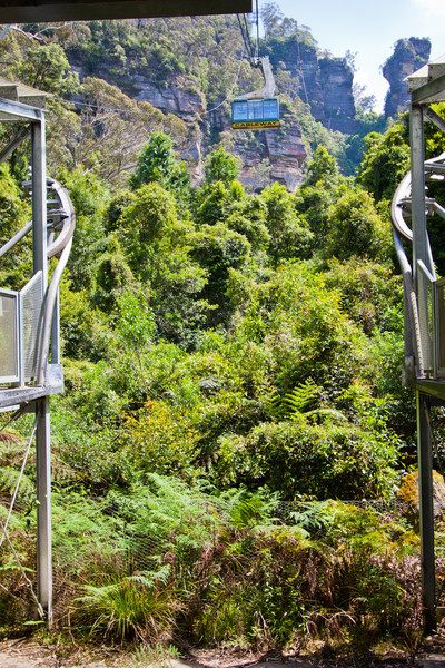 The Scenic Cableway descending