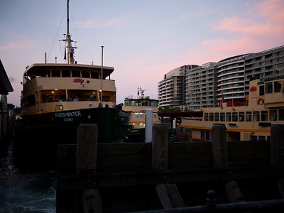 Sydney ferries at sunset