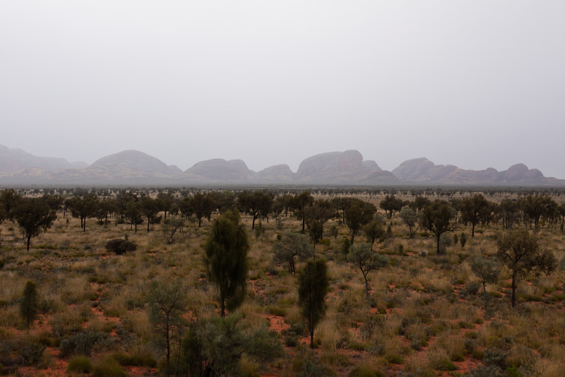 Kata Tjuta from afar