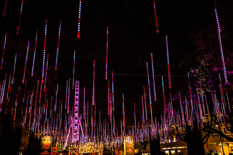 """There was an art installation at the Brisbane Festival called the """"Brisbane Airport Light Garden."""" I'm not sure what it has to do with the airport. I was thinking it was a mostly static installation until it stopped being static!"""