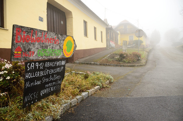 A foggy winter day at Weinviertel, Austria