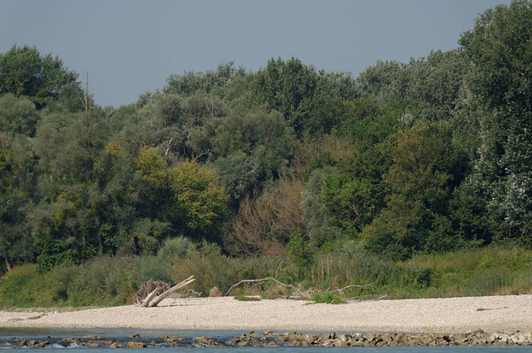 River Danube East of Vienna, Hainburg
