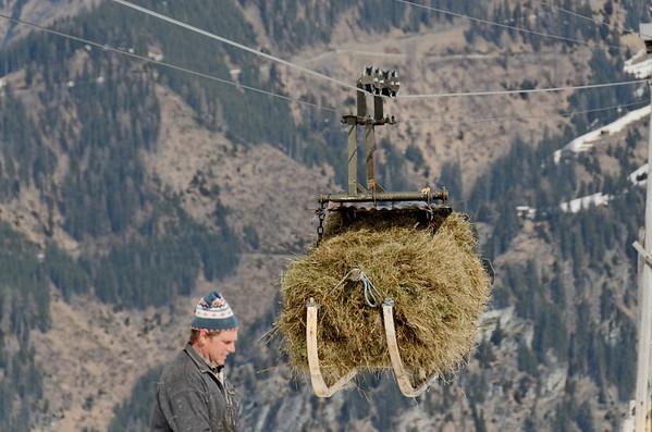 Alpine hey transport, Aschlreitalm in Spring, Niedere Tauern, Austria