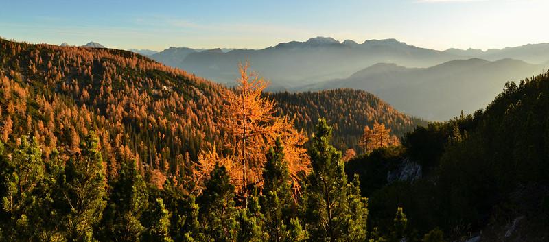 Autumn colors, Sengsengebirge, Austria