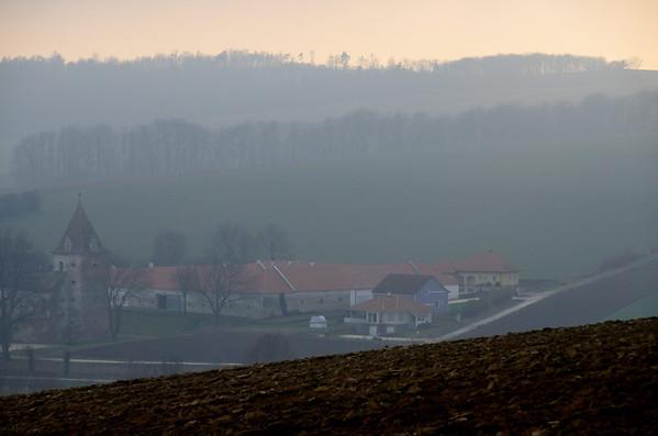 A foggy winter day at Weinviertel, Austria