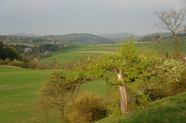 Höhe Dornbach - Sittendorf