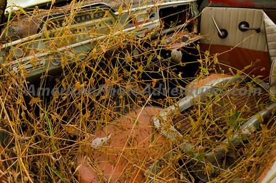 Volvo_Graveyard_0226