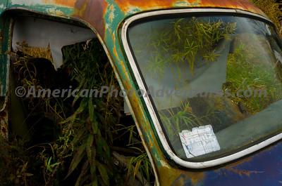 Volvo_Graveyard_0205