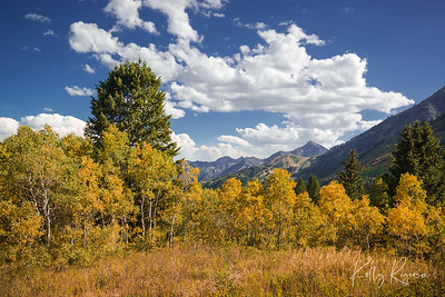 A bit of autumn in the mountains of northern Utah.