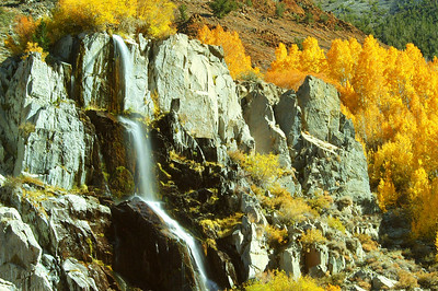 Waterfall & Aspens