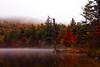 Autumn Trees at Moss Lake