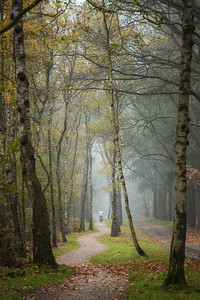Biking through autumn