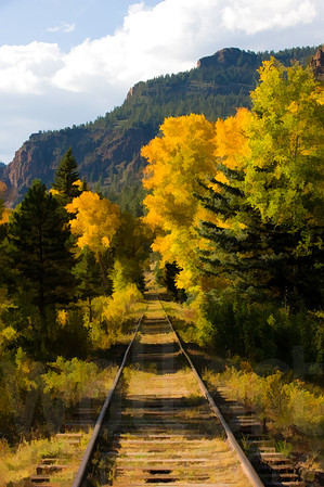 Colorado Fall Foliage 027 | Wall Art Resource