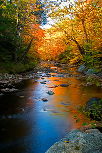 Autumn on an Adirondack Stream